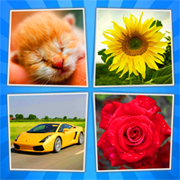 4 Pics 1 Word Nibble Labs answers