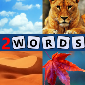 4 pics 2 words answers Windows Phone