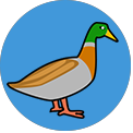 Word Camp Duck answers