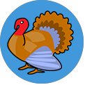 Word Camp Turkey answers